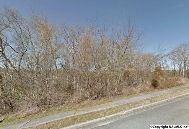 14008 Carlisle Drive, Huntsville, AL 35803 (MLS #1057585) :: Capstone Realty
