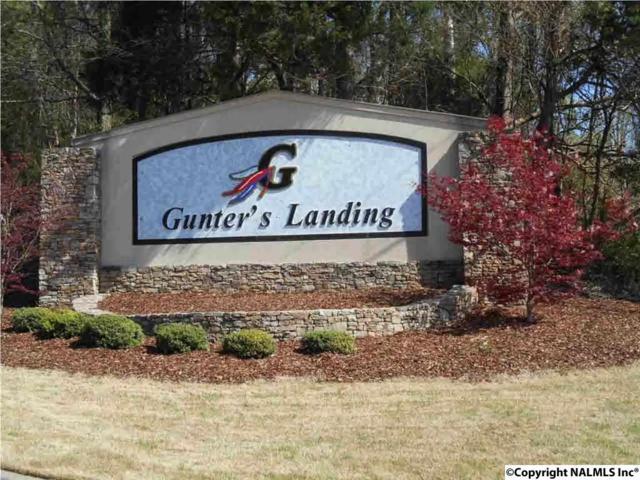1 Heritage Drive, Guntersville, AL 35976 (MLS #1059436) :: RE/MAX Alliance