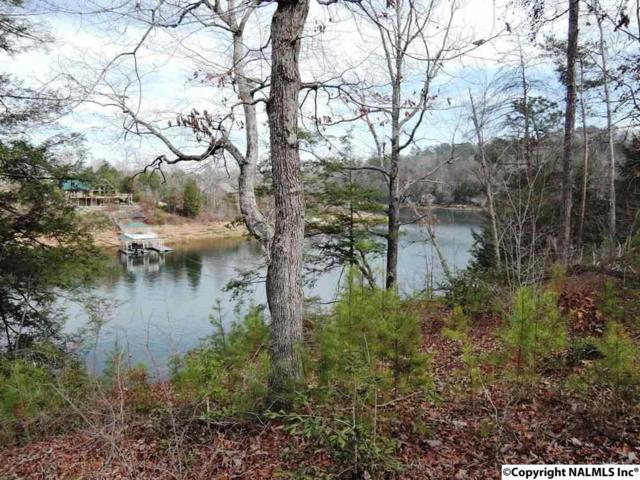 89 Sipsey Overlook Road, Double Springs, AL 35553 (MLS #1060532) :: RE/MAX Alliance