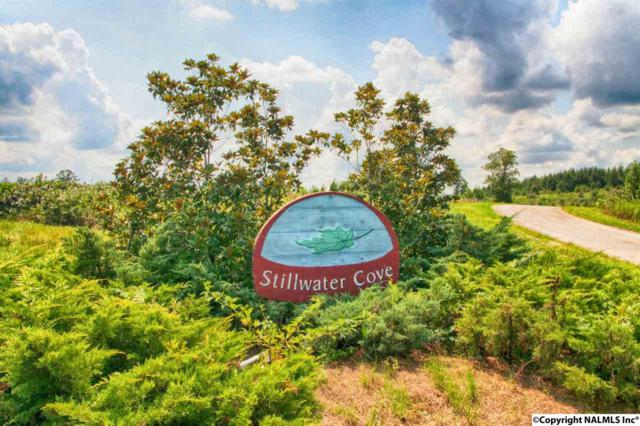 LOT 31 Stillwater Coves, Double Springs, AL 35553 (MLS #1060656) :: RE/MAX Alliance