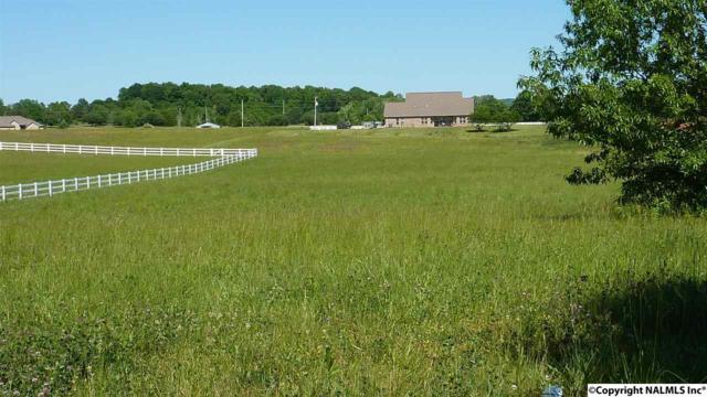 Lot 13 Beth Road, New Market, AL 35761 (MLS #1061090) :: Amanda Howard Real Estate™