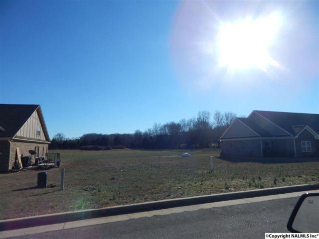 21 Shadow Way, Decatur, AL 35603 (MLS #1061462) :: Capstone Realty
