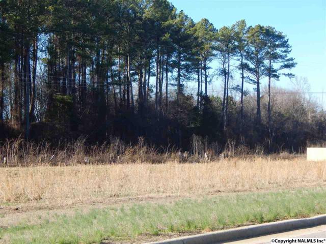 41 Shadow Mountain, Decatur, AL 35603 (MLS #1061489) :: Capstone Realty