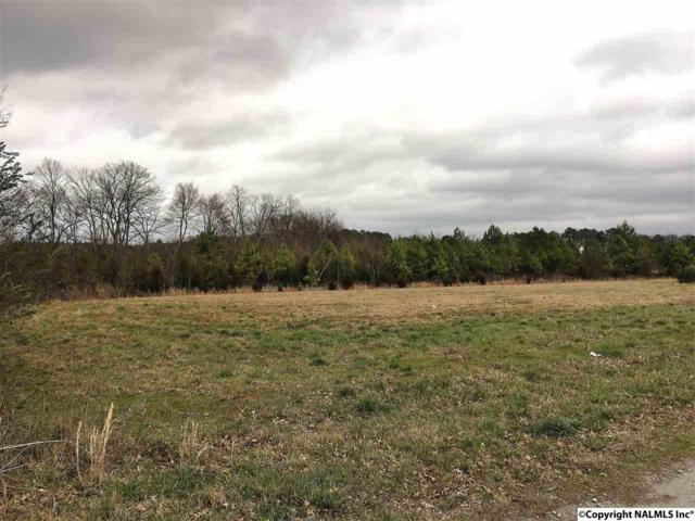 71 Oakes Road, Laceys Spring, AL 35754 (MLS #1062297) :: Amanda Howard Real Estate™