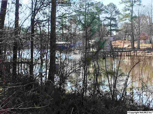Waterhouse Circle, Cedar Bluff, AL 35959 (MLS #1062983) :: RE/MAX Distinctive | Lowrey Team