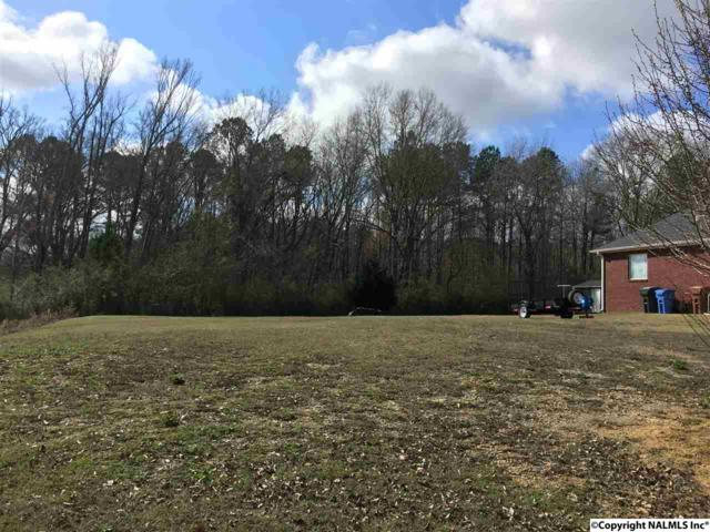 1202 Hunter Lane, Hartselle, AL 35640 (MLS #1063109) :: RE/MAX Alliance