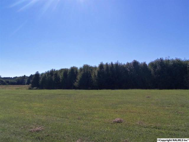 Lot 7 Jacksonville Street, Centre, AL 35960 (MLS #1063174) :: The Pugh Group RE/MAX Alliance