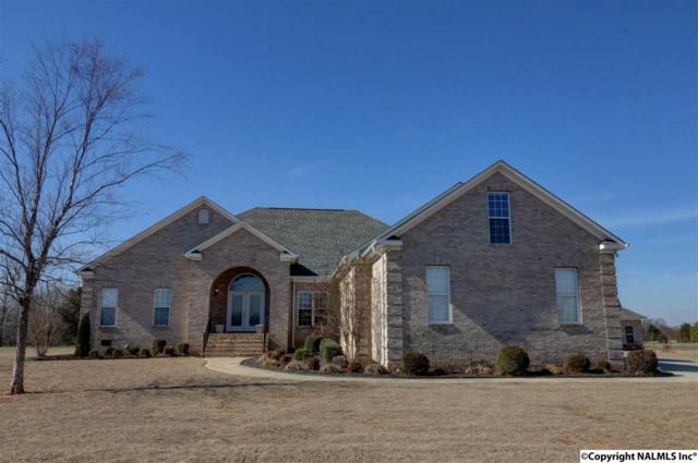 595 Beth Road, New Market, AL 35761 (MLS #1063561) :: Amanda Howard Real Estate™