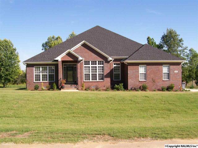 113 North Rim Road, Toney, AL 35773 (MLS #1063664) :: Amanda Howard Real Estate™