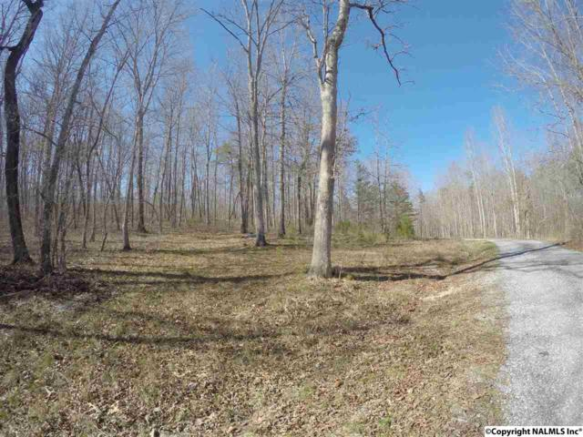Lot 27 Bear Creek Trail, Fort Payne, AL 35967 (MLS #1064699) :: RE/MAX Alliance