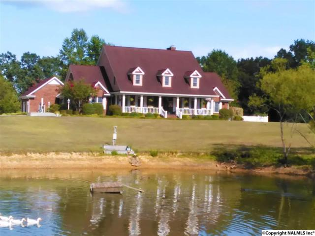 8546 County Road 222, Logan, AL 35098 (MLS #1065302) :: Amanda Howard Sotheby's International Realty