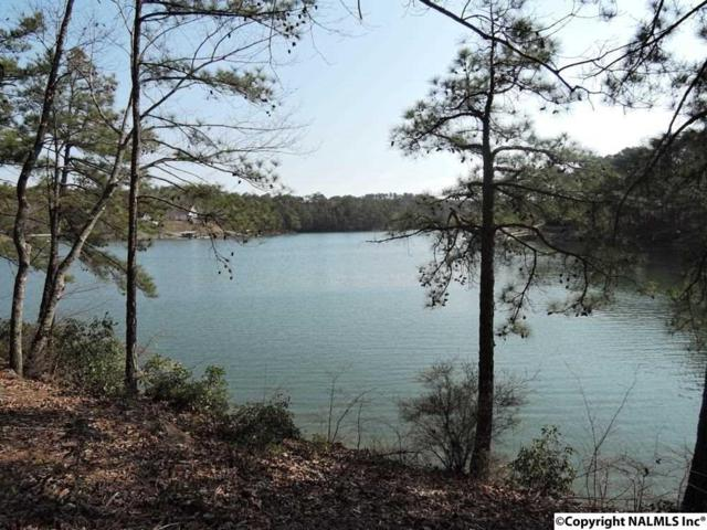 22 River Bend Drive, Double Springs, AL 35553 (MLS #1065587) :: Amanda Howard Real Estate™