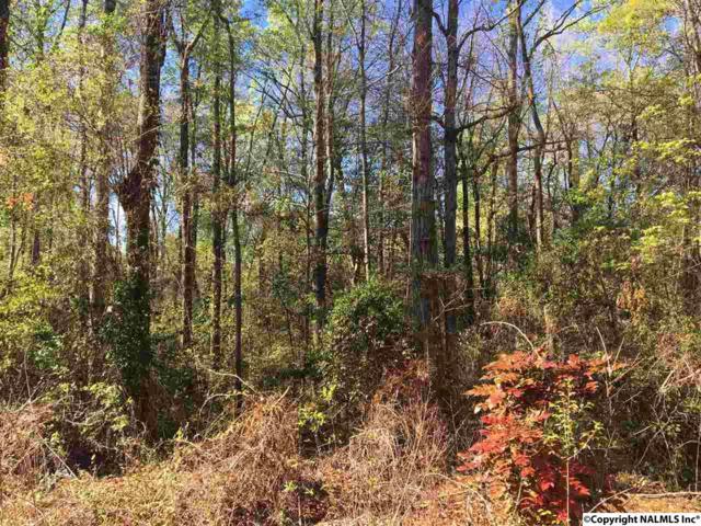 LT 74 Western Lane, Southside, AL 35907 (MLS #1065716) :: Amanda Howard Real Estate™
