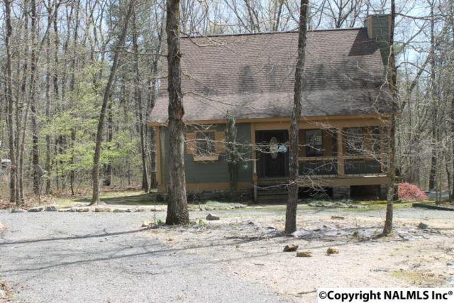 269 Road 9079, Mentone, AL 35984 (MLS #1066473) :: Amanda Howard Real Estate™