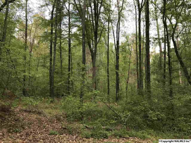 Lot 3 Linda Street, Huntsville, AL 35811 (MLS #1066779) :: Amanda Howard Real Estate™