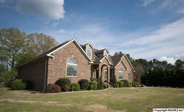 20190A Gill Crest, Athens, AL 35611 (MLS #1066857) :: Capstone Realty