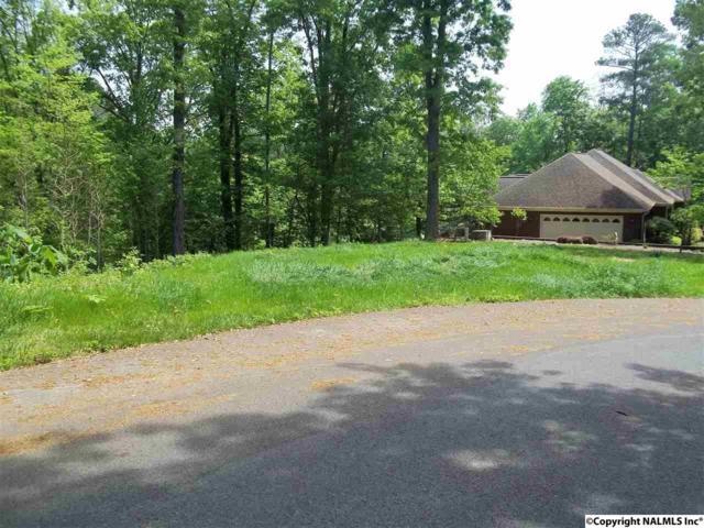LOT 12 Amber Lane, Guntersville, AL 35976 (MLS #1067279) :: Amanda Howard Real Estate™