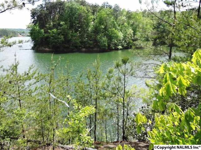 10 Bluebird Lane, Double Springs, AL 35553 (MLS #1068017) :: Amanda Howard Sotheby's International Realty