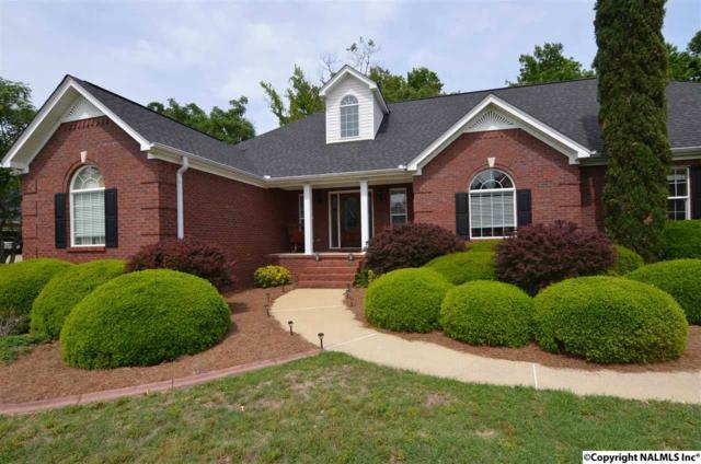 710 Lake Vista Drive, Rainbow City, AL 35906 (MLS #1068383) :: Amanda Howard Real Estate™