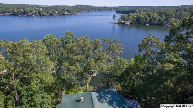 425 County Road 220, Crane Hill, AL 35057 (MLS #1068509) :: Amanda Howard Real Estate™