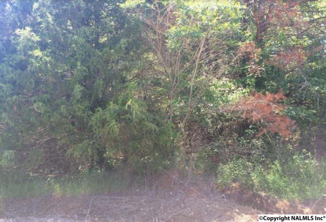 217 Bumblebee Drive, Harvest, AL 35749 (MLS #1068725) :: Amanda Howard Real Estate™