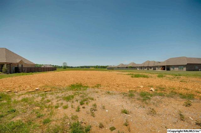 17191 Lochton Drive, Athens, AL 35613 (MLS #1068769) :: Amanda Howard Real Estate™