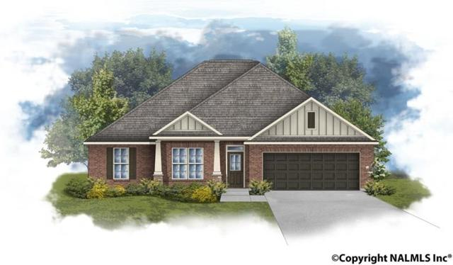 17110 Fieldway Circle, Harvest, AL 35749 (MLS #1069086) :: Legend Realty