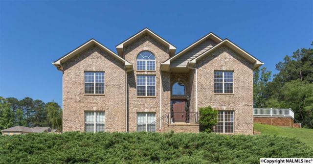 2128 Buster Lane, Southside, AL 35907 (MLS #1069131) :: Amanda Howard Real Estate™