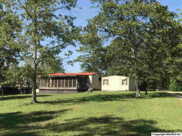 300 County Road 625, Cedar Bluff, AL 35959 (MLS #1069285) :: Capstone Realty