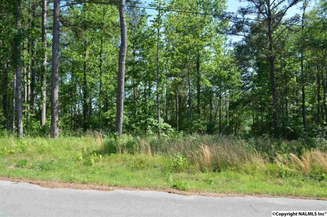 104 Sioux Trace, Gurley, AL 35748 (MLS #1069288) :: Amanda Howard Real Estate™