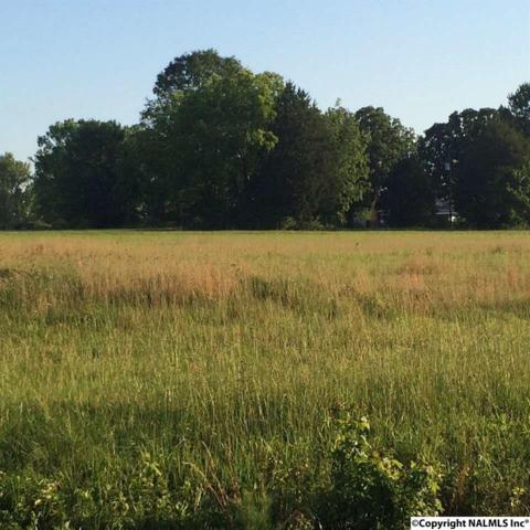 Lot 1 County Road 316, Trinity, AL 35673 (MLS #1069366) :: Amanda Howard Real Estate™
