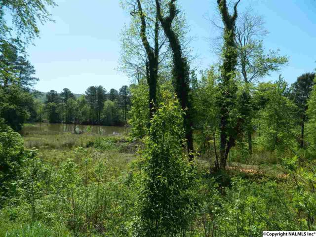 0 River Run Trail, Gadsden, AL 35901 (MLS #1069452) :: RE/MAX Alliance