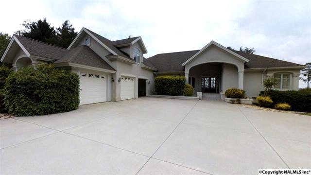 900 Buck Island Drive, Guntersville, AL 35976 (MLS #1070072) :: RE/MAX Alliance