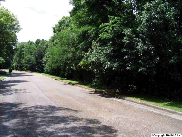 Lot 24 Sandusky Street, Huntsville, AL 35801 (MLS #1070180) :: RE/MAX Alliance