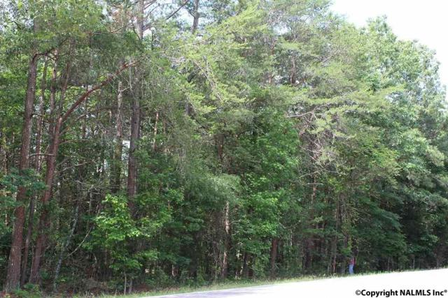 LOT #6, #7 Hwy 176, Fort Payne, AL 35967 (MLS #1070693) :: Intero Real Estate Services Huntsville