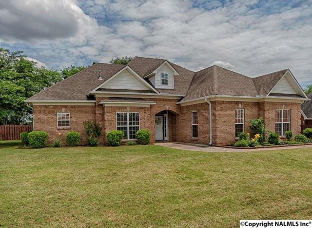 25157 Mahalo Circle, Madison, AL 35756 (MLS #1071248) :: Amanda Howard Real Estate