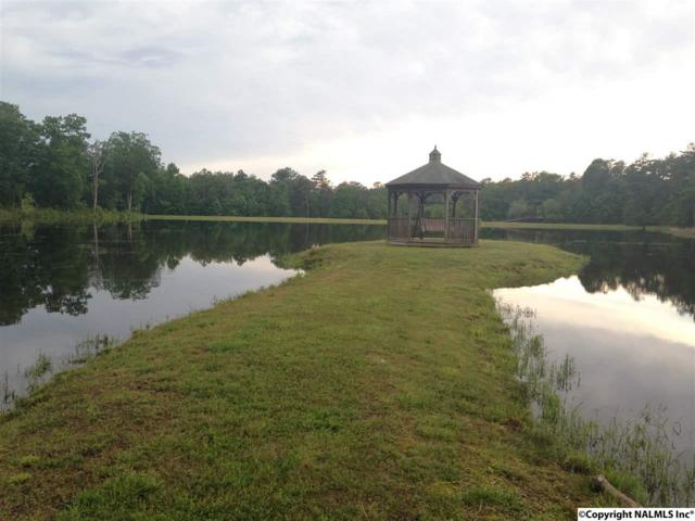Lot 49 HL County Road 103, Mentone, AL 35984 (MLS #1071330) :: Amanda Howard Sotheby's International Realty
