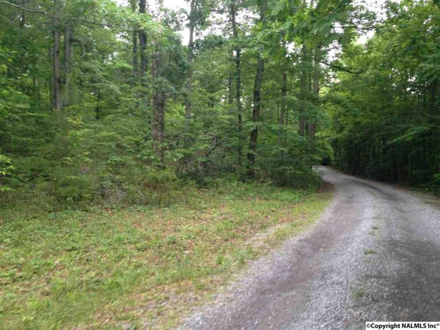 Lot 28 Bear Creek Trail, Fort Payne, AL 35967 (MLS #1071332) :: RE/MAX Alliance