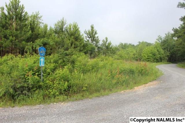 2815 County Road 665, Henagar, AL 35978 (MLS #1071911) :: RE/MAX Distinctive | Lowrey Team