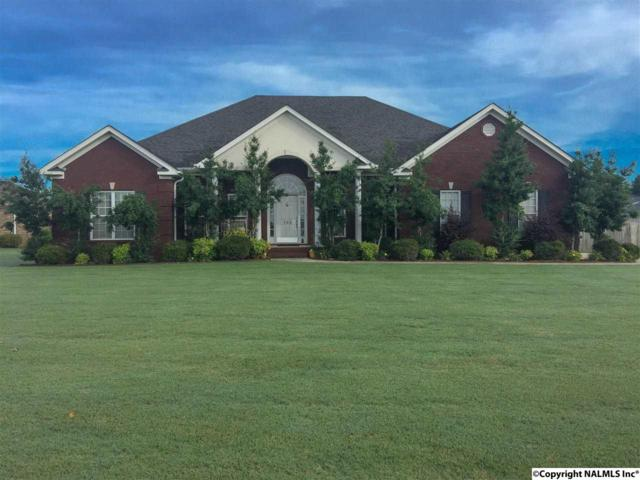 132 Shackleford Road, Meridianville, AL 35759 (MLS #1072105) :: Intero Real Estate Services Huntsville