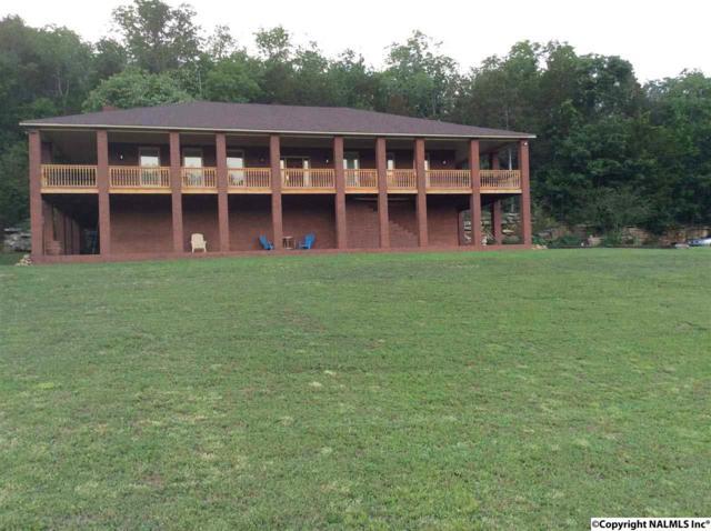 721-B Kennamer Cove Road, Woodville, AL 35776 (MLS #1072120) :: Amanda Howard Real Estate