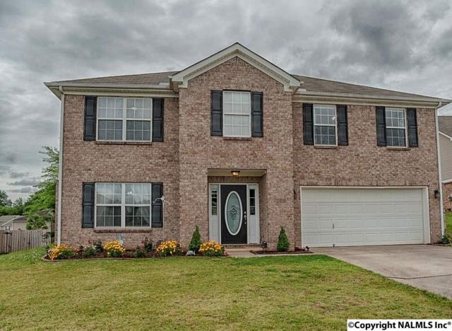 169 Ranier Street, Meridianville, AL 35759 (MLS #1072201) :: Intero Real Estate Services Huntsville