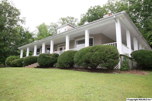 119 Lakeshore Drive, Rainbow City, AL 35906 (MLS #1072249) :: Intero Real Estate Services Huntsville