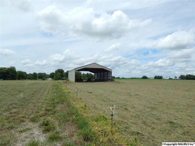 Elkwood Section Road, Toney, AL 35773 (MLS #1072293) :: RE/MAX Distinctive | Lowrey Team