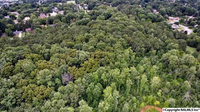 1111 Strong Street, Madison, AL 35758 (MLS #1072332) :: Amanda Howard Real Estate