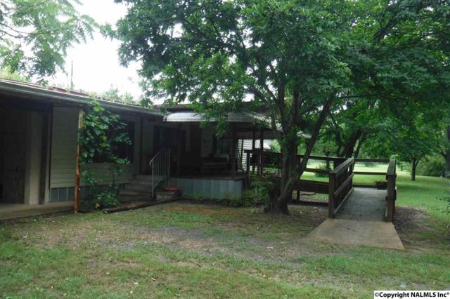 732 County Road 1843, Arab, AL 35016 (MLS #1072353) :: Amanda Howard Real Estate