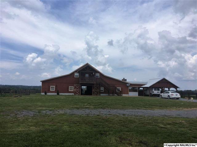 4550 Nixon Chapel Road, Horton, AL 35980 (MLS #1072357) :: Amanda Howard Real Estate