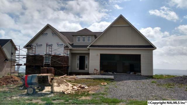 98 Guffey Road, Scottsboro, AL 35769 (MLS #1072381) :: RE/MAX Distinctive | Lowrey Team