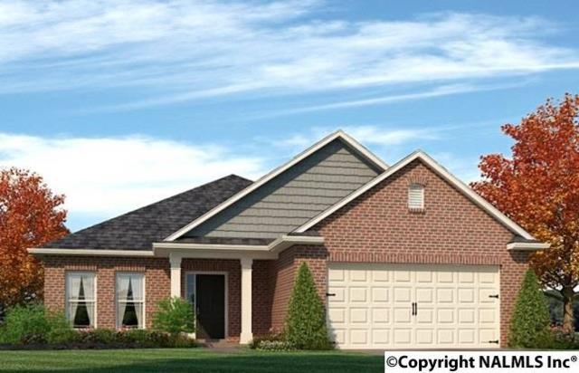 144 Kenton Lane, Madison, AL 35756 (MLS #1072387) :: Amanda Howard Real Estate