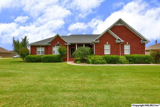 30126 Hardiman Road, Madison, AL 35756 (MLS #1072454) :: Amanda Howard Real Estate